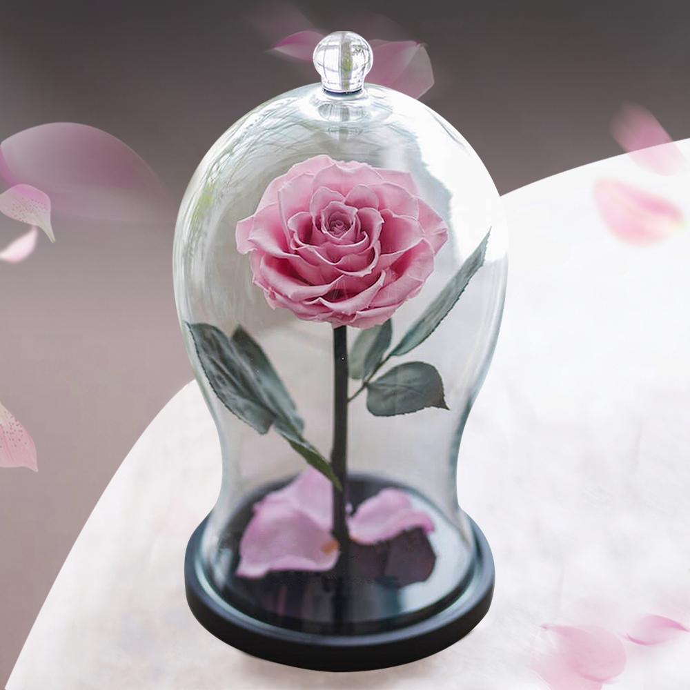 стабилизированные цветы в стекле notta & belle роза