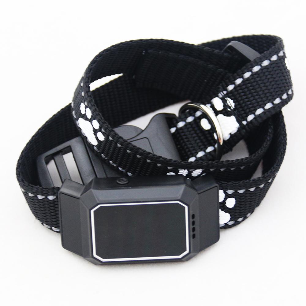 GPS-трекер для собак и кошек Petsee #1