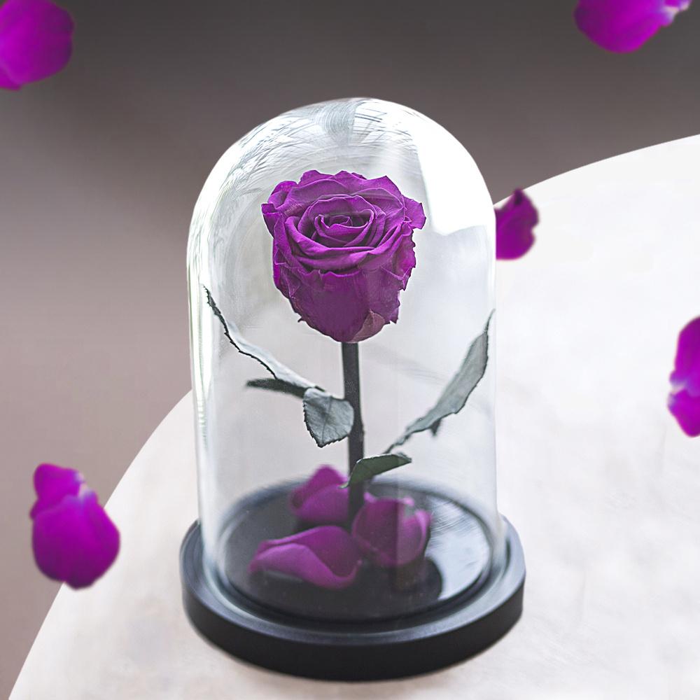 Сухоцветы Notta & Belle Роза, 21 см, 607 гр #1