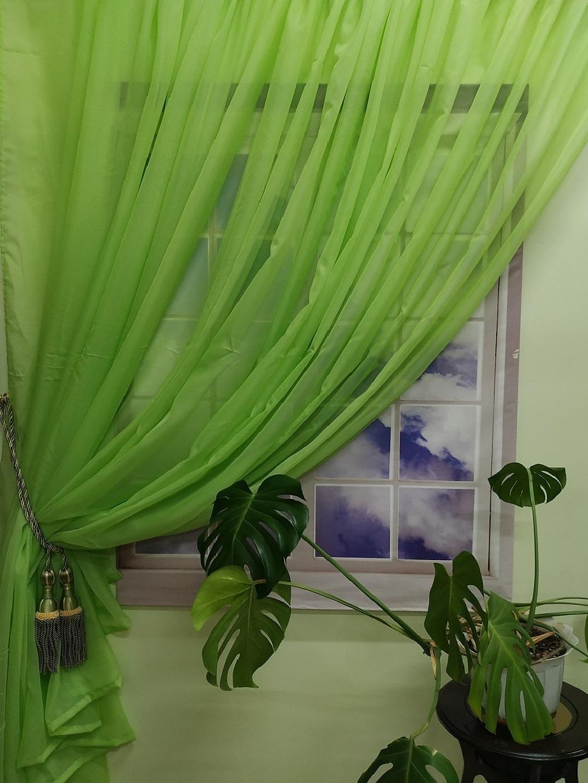готовы соорудить портьеры софт зеленые и белая вуаль фото одной самых
