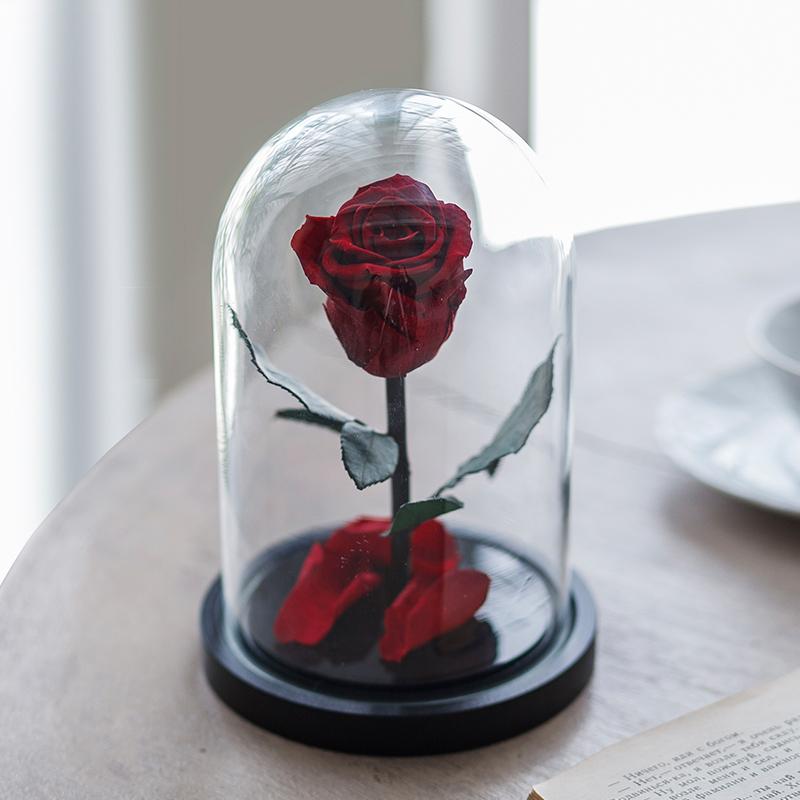 Долговечная стабилизированная роза в стеклянной колбе Mini - Notta & Belle