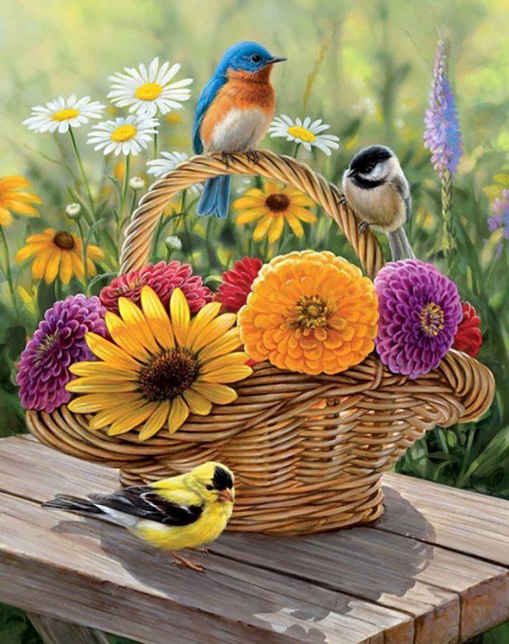 Открытки виды природы с добрым утром, картинках день