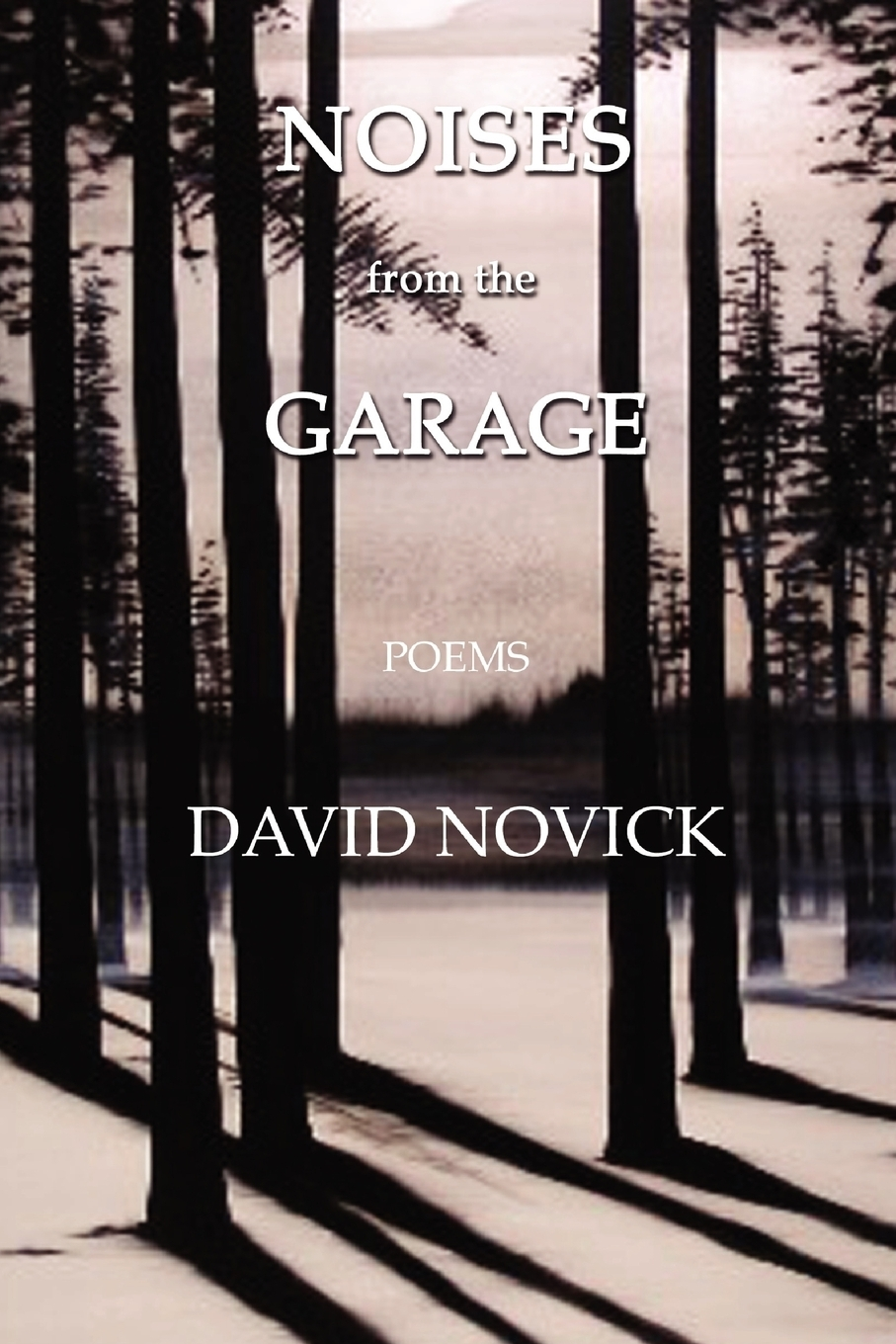 David Novick. Noises from the Garage