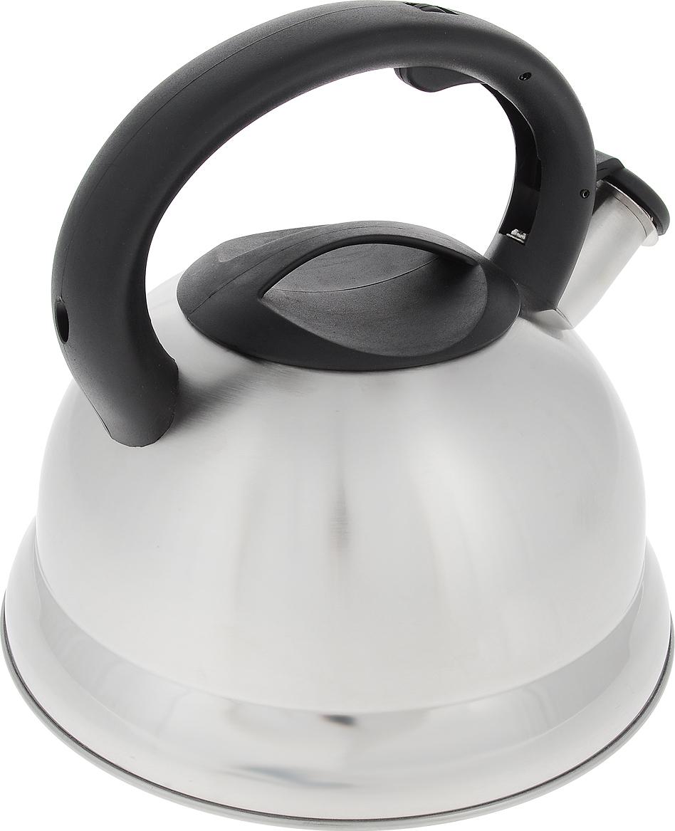 Чайник TECO, 3,5 л, со свистком, нержавеющая сталь, капсульное дно, пластиковая ручка и крышка