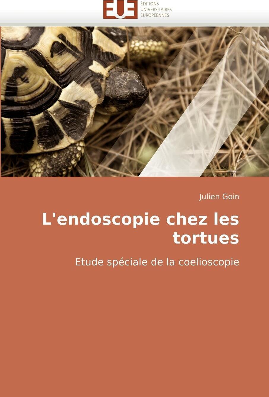 L``endoscopie chez les tortues