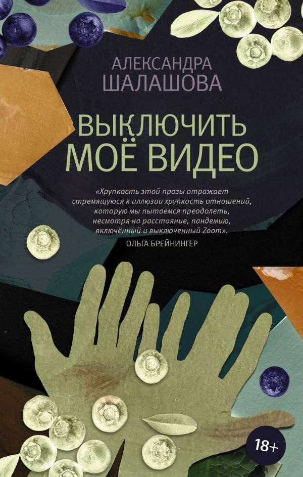 Выключить моё видео   Шалашова Александра Евгеньевна #1