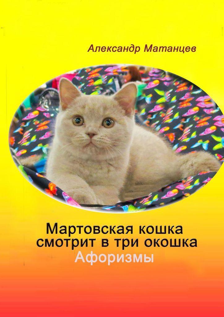 Мартовская кошка смотрит в три окошка #1