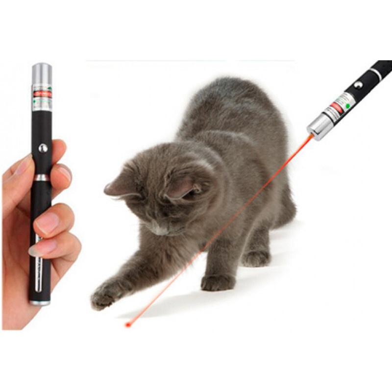 Лазерная указка для игры с кошкой #1