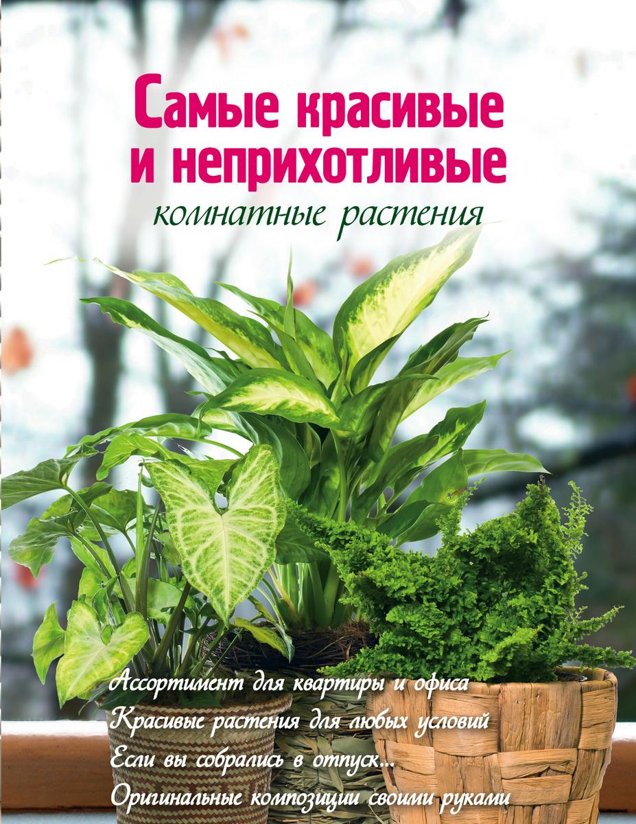 Самые красивые и неприхотливые комнатные растения (Вырубка. Цветы в саду и на окне (обложка))   Волкова #1