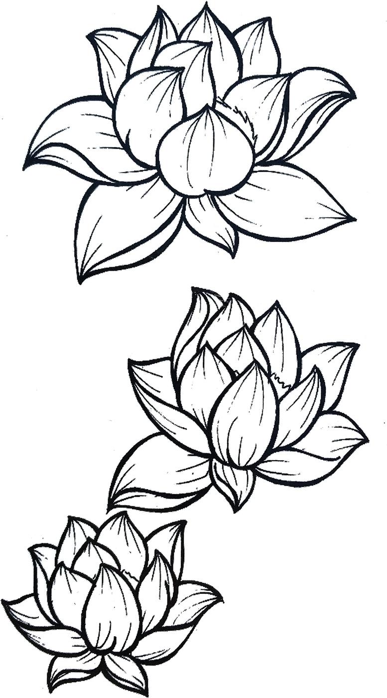 Черно белые картинки с цветами для срисовки, картинки