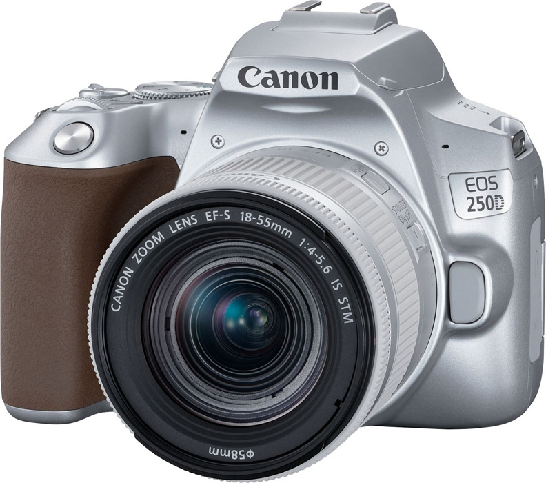 Зеркальная фотокамера Canon EOS250DKit18-55ISSTM, серебристый