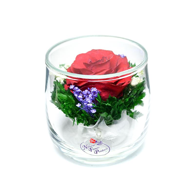 стабилизированные цветы в стекле в вакууме, не вянут 7 лет - nfssr