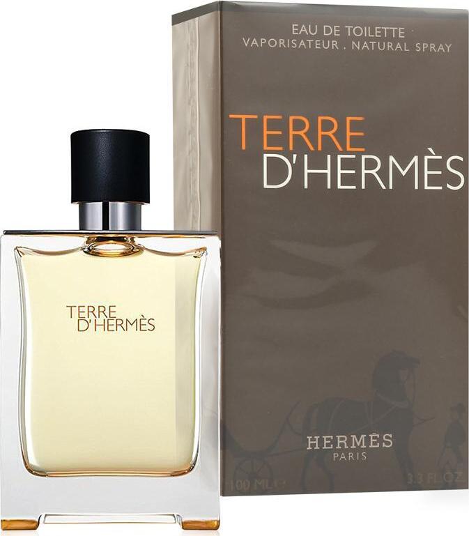 Hermes Terre DHermes Eau de Toilette мужской 100 мл