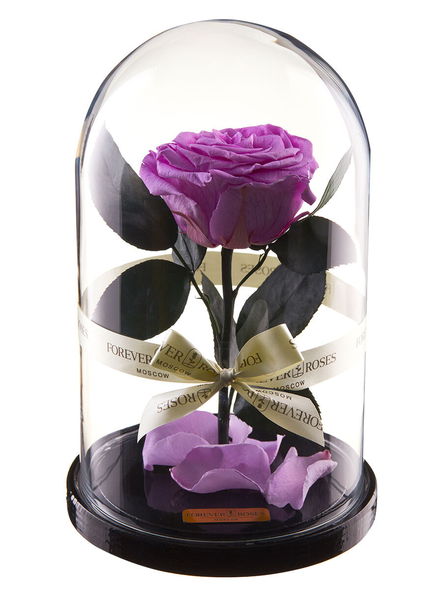 стабилизированные цветы в стекле forever roses moscow роза, 1250 гр