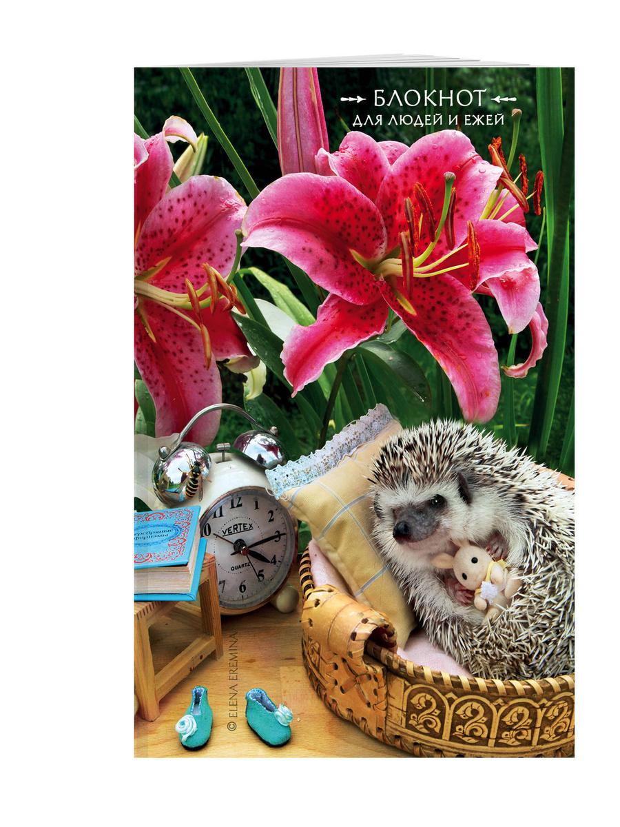 Блокнот для людей и ежей (лилии). 115х180мм, мягкая обложка, 64стр. | Еремина Елена Петровна  #1