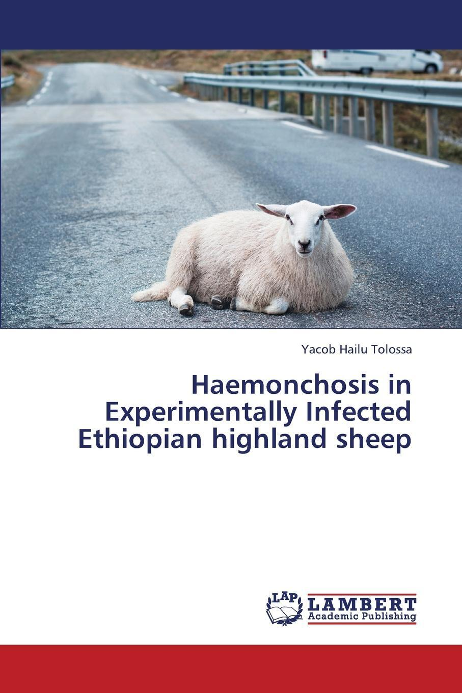 Haemonchosis in Experimentally Infected Ethiopian Highland Sheep