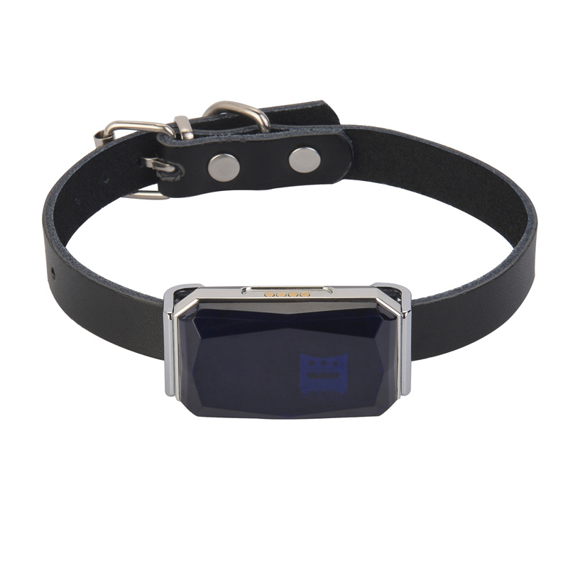 GPS-трекер c кожаным ошейником для собак и кошек Hadog  #1