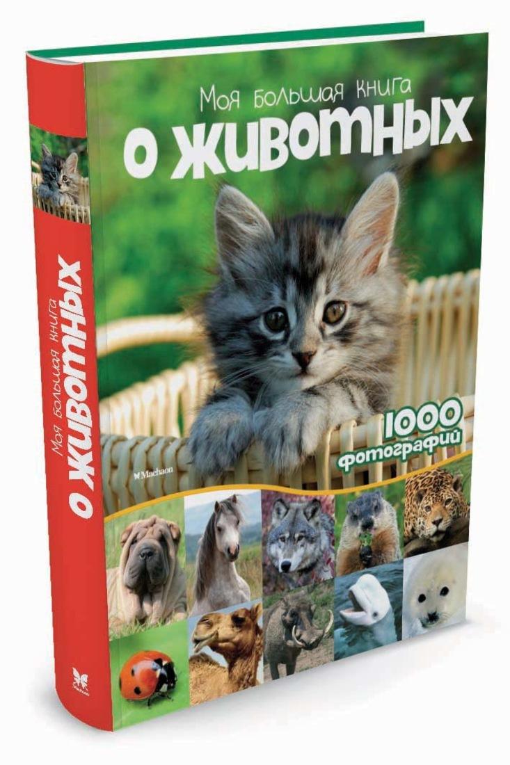 Моя большая книга о животных | Куйе Наталья #1