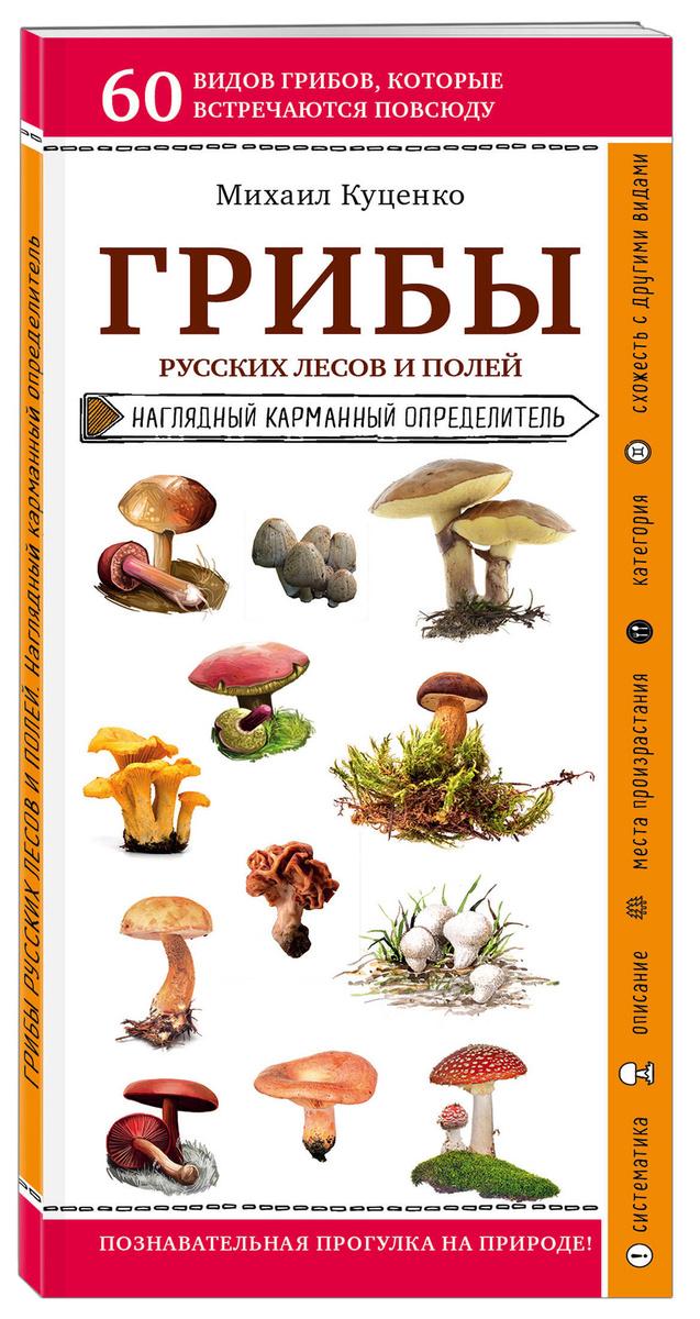 Грибы русских лесов и полей | Куценко Михаил #1