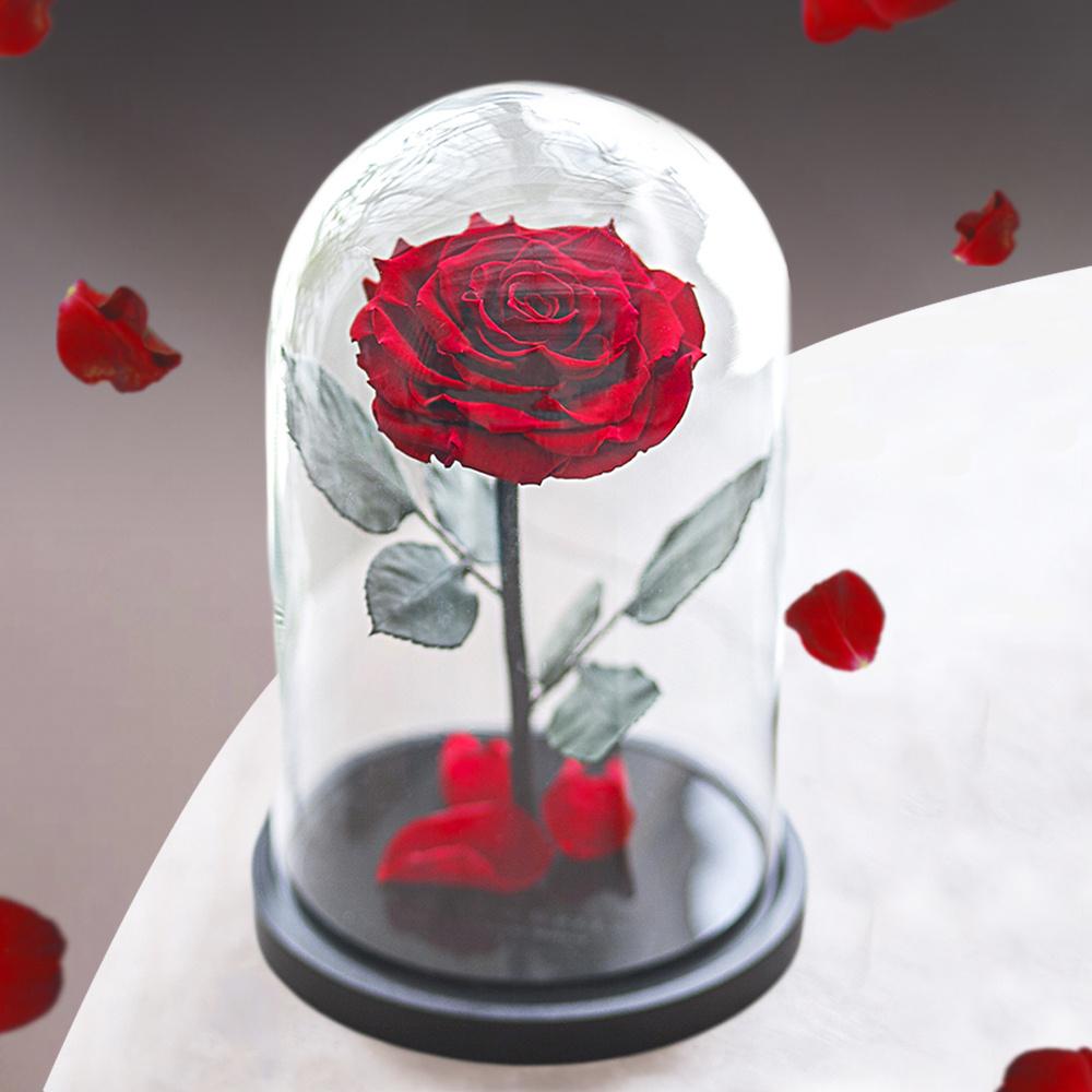 Букет из стабилизированных цветов Notta & Belle Роза, 26 см, 753 гр  #1
