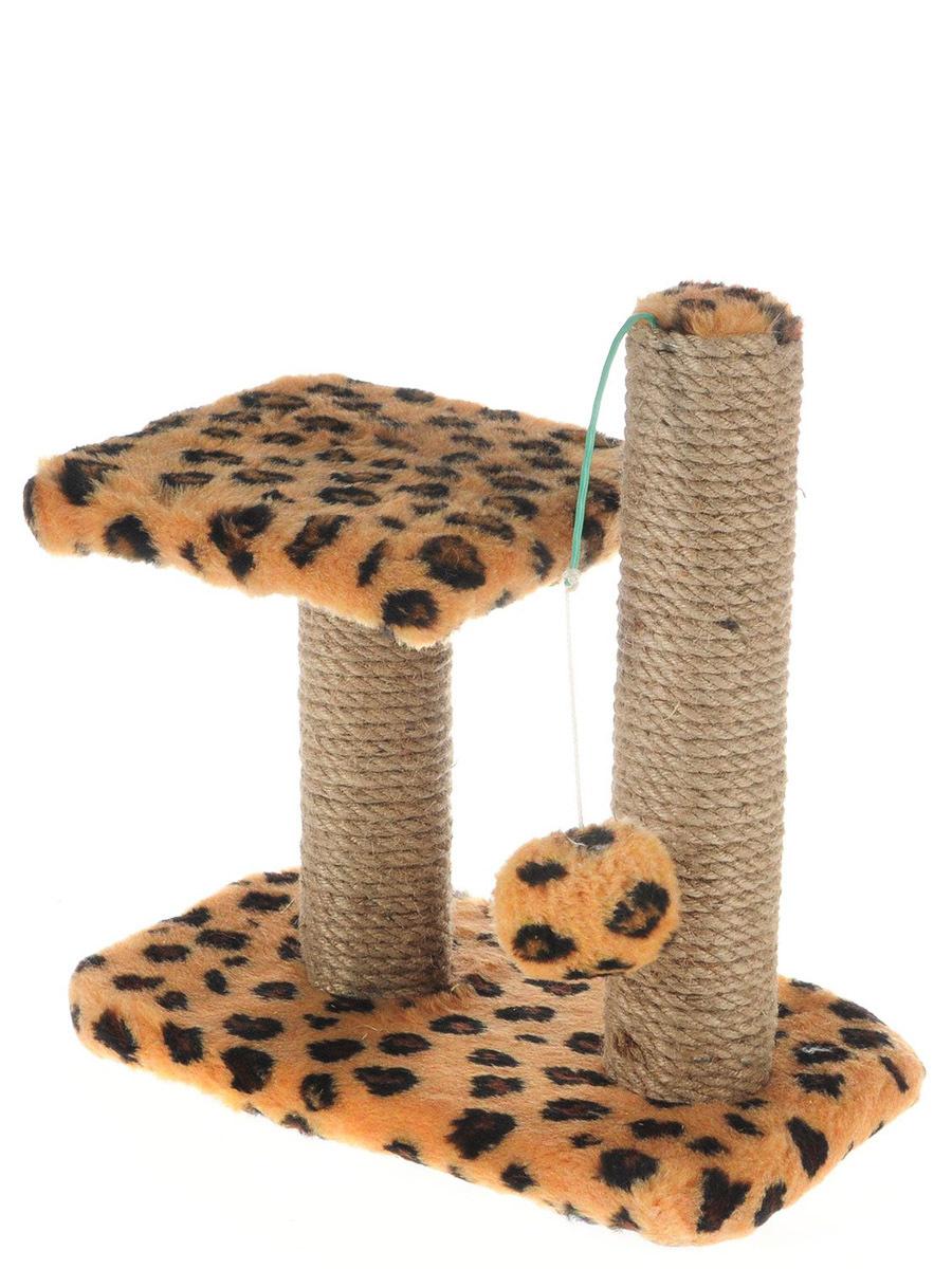 картинки когтеточек для котят класть напольное покрытие