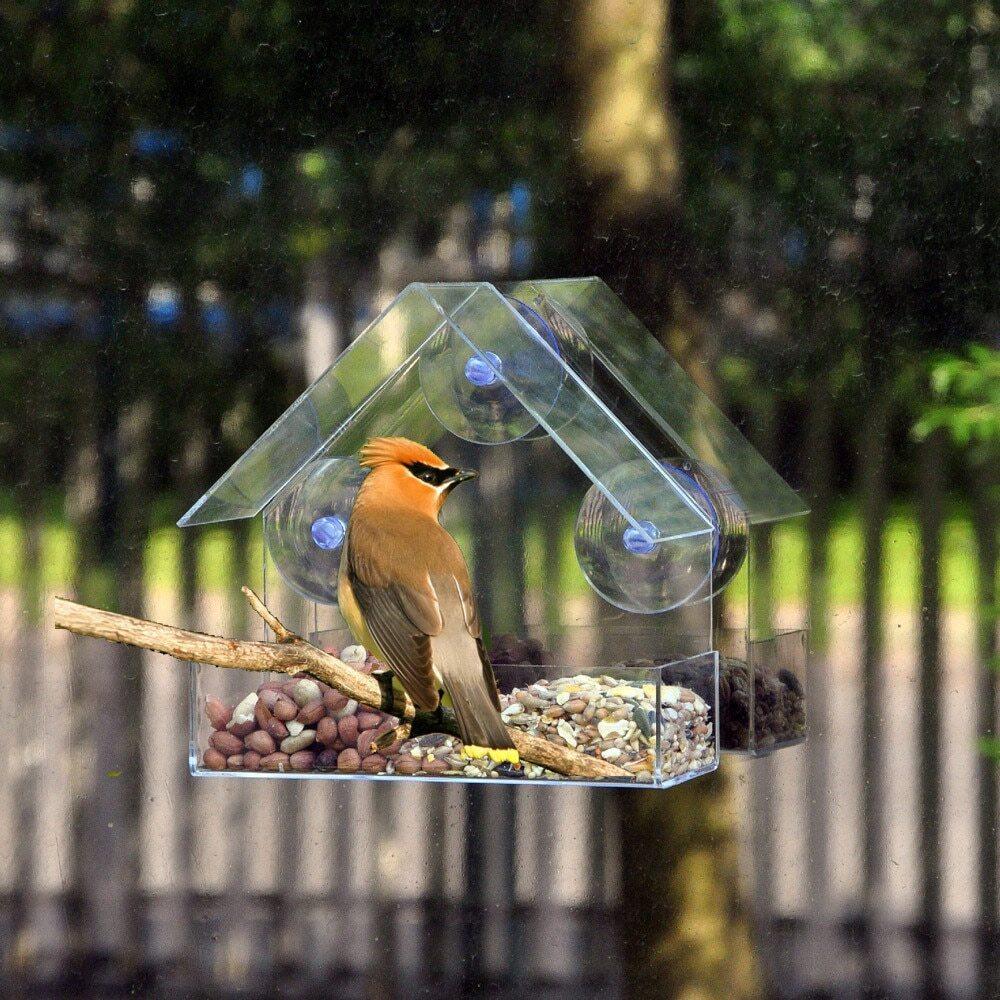 mamadi, кормушка для птиц+корм в подарок на окно всесезонная прозрачная