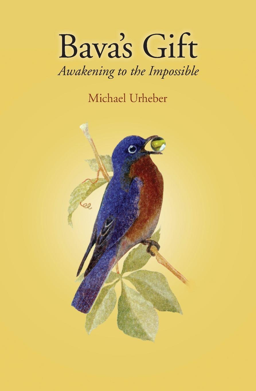 Bava`s Gift. Awakening to the Impossible