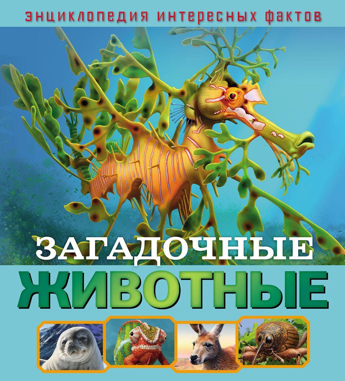 Загадочные животные. Развивающая книга