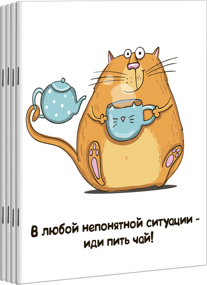 Тетради в клетку комплект ПОЛИНОМ серия Кот Крендель 48 листов, 4 штуки, 4 дизайна  #1