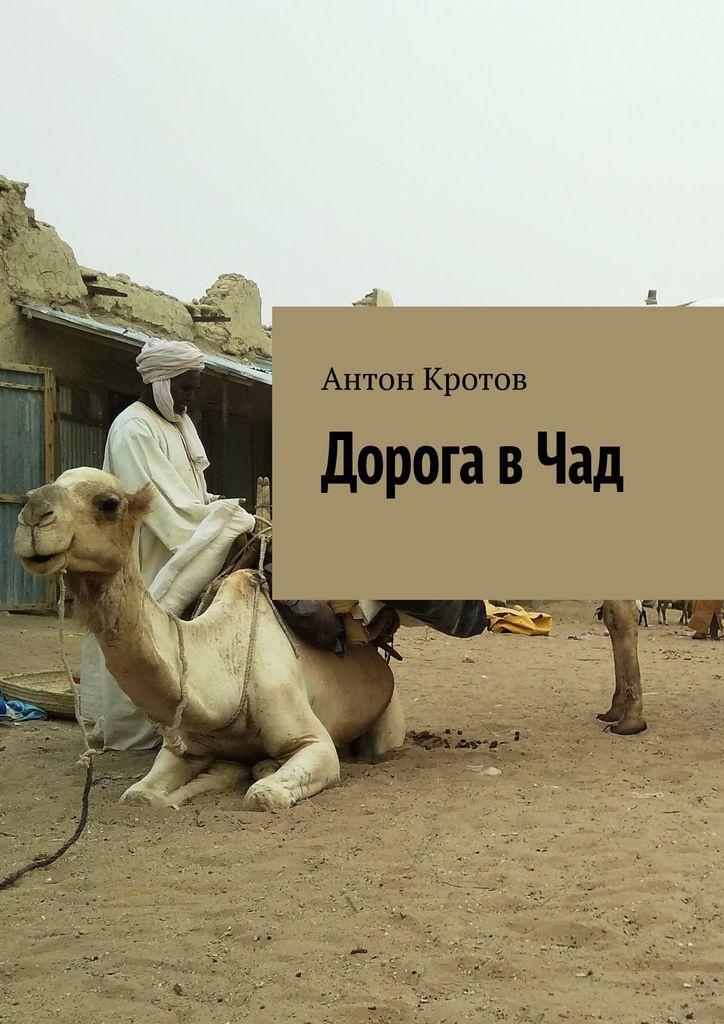 Дорога в Чад #1