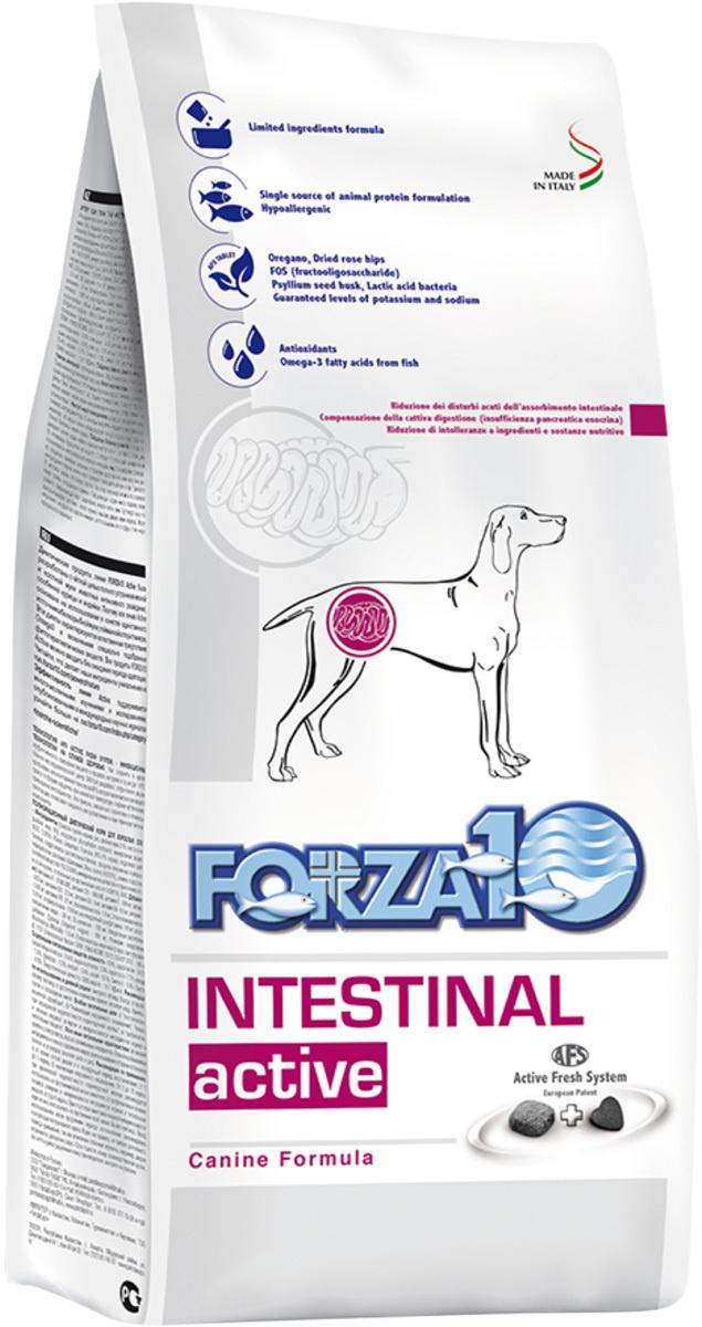 Сухой корм FORZA10 DOG INTESTINAL ACTIVE для взрослых собак всех пород при заболеваниях желудочно-кишечного #1