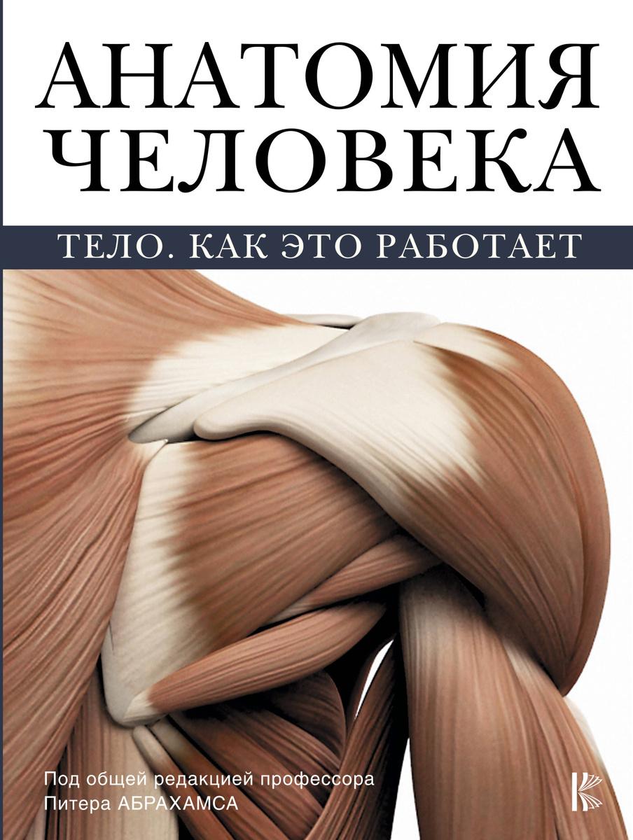 Анатомия человека | Нет автора #1