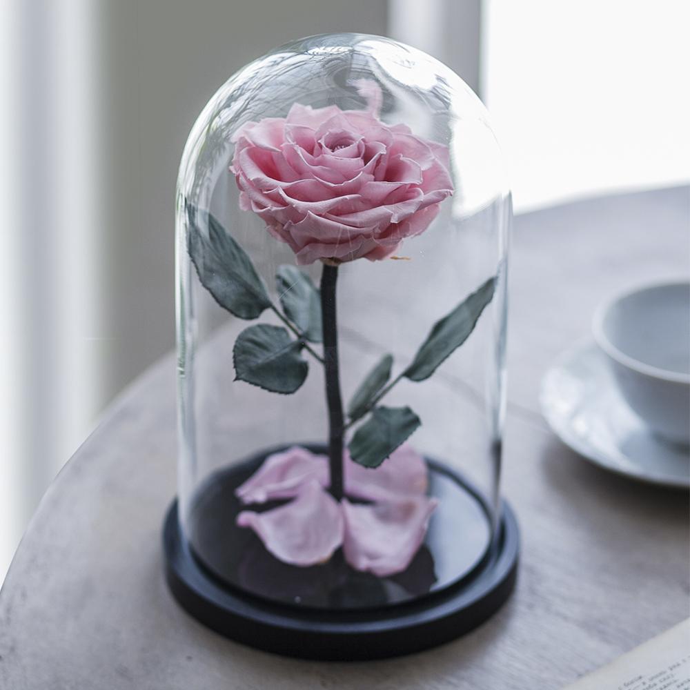 Долговечная стабилизированная роза в стеклянной колбе Premium - Notta & Belle