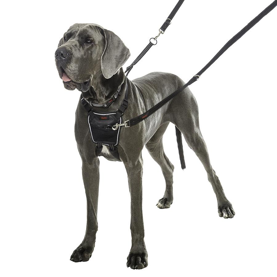 """Шлейка для собак препятствующая натяжению COA """"HALTI No Pull"""", черная, 46-62см (Великобритания)  #1"""