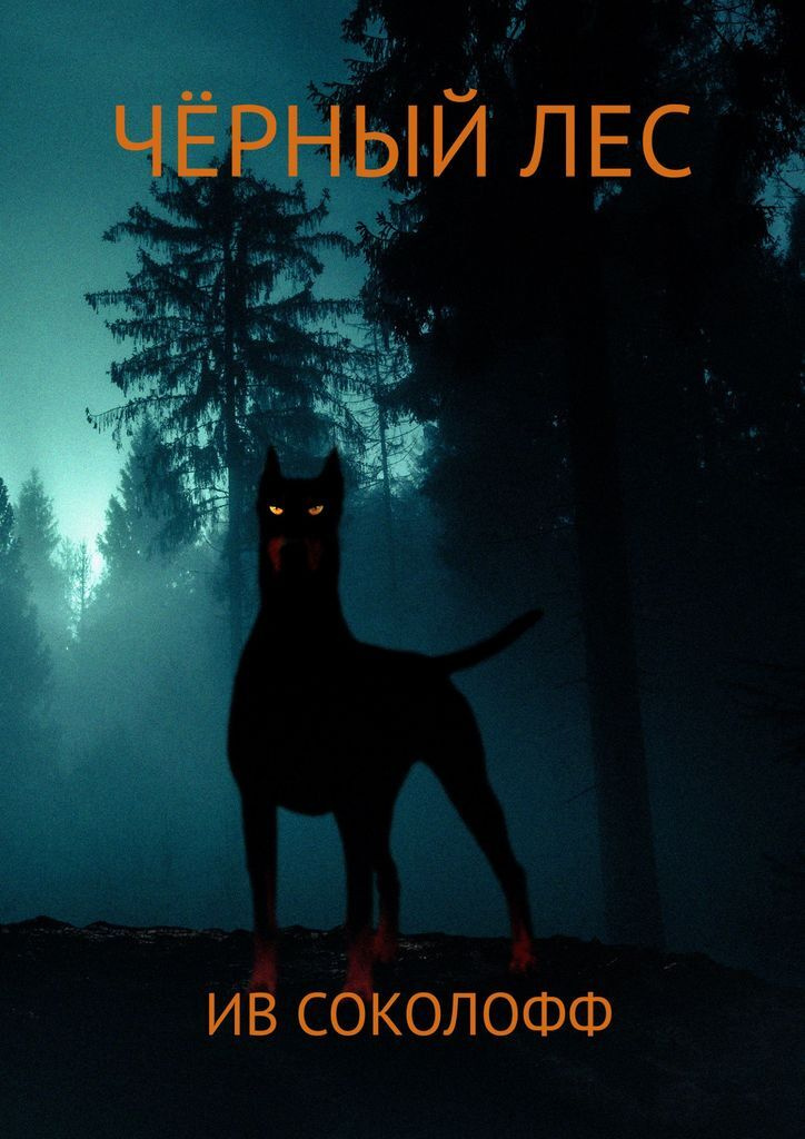 Чёрный Лес #1