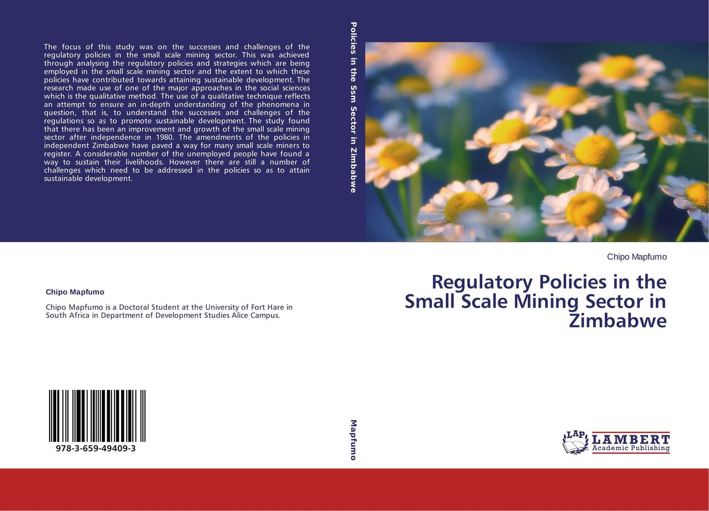 Chipo Mapfumo Regulatory Policies in the Small Scale Mining Sector in Zimbabwe development of small scale food industry cluster in indonesia