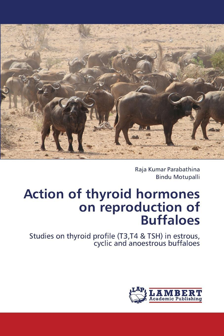 Action of Thyroid Hormones on Reproduction of Buffaloes