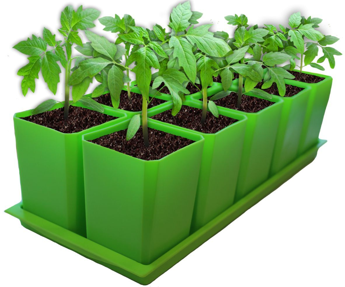 горшки для рассады растений купить в краснодаре
