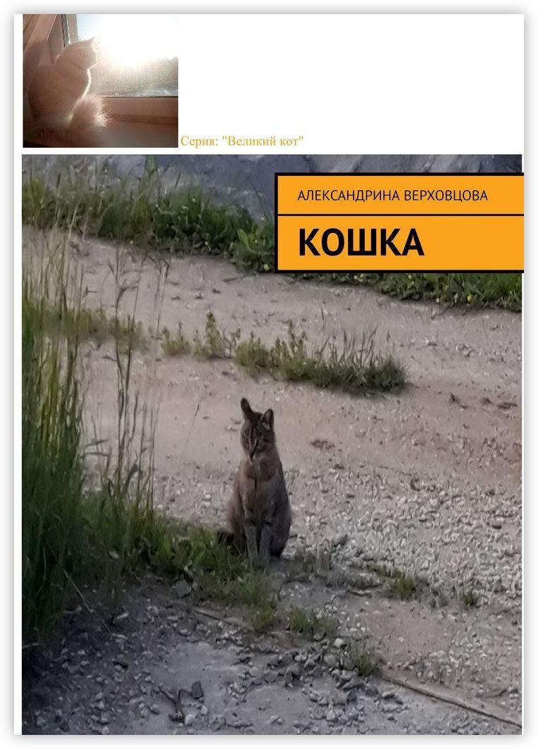 Кошка #1