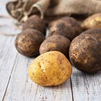 Картофель белый грязный, 1,5 кг