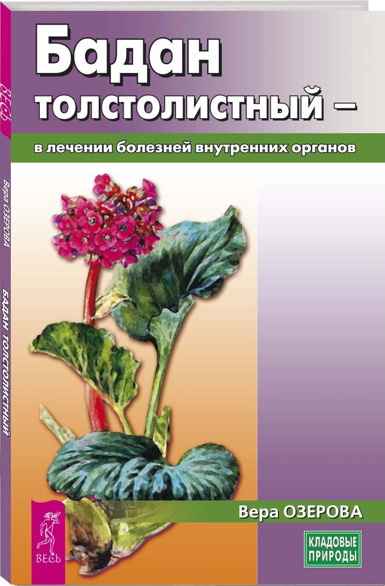Бадан толстолистный - в лечении болезней внутренних органов | Озерова Вера Марковна  #1
