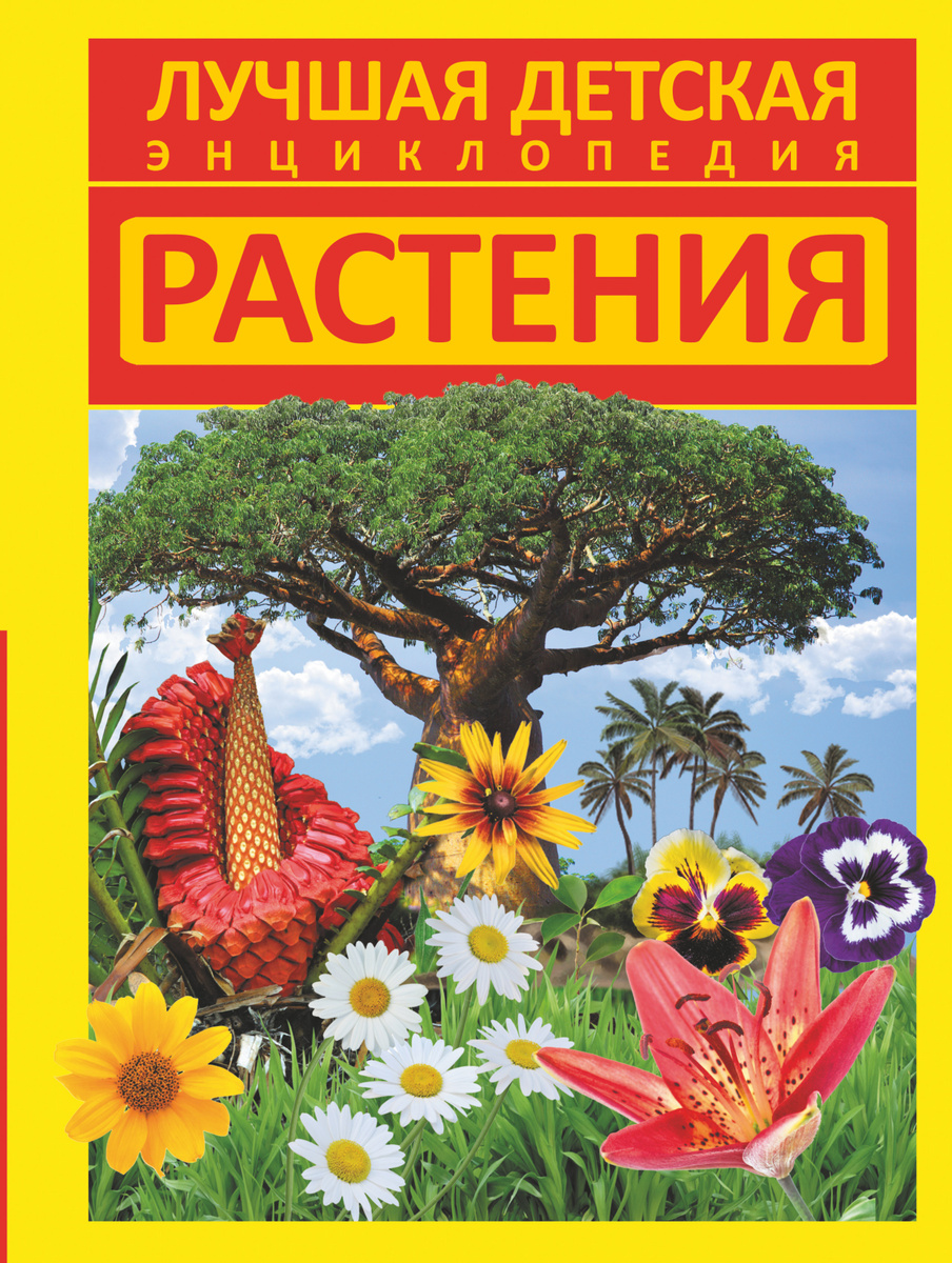 Растения | Хомич Елена Олеговна #1