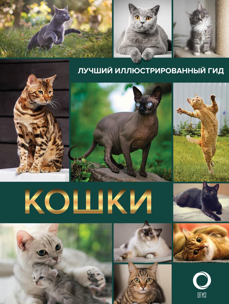 Кошки. Лучший иллюстрированный гид   Нет автора #1