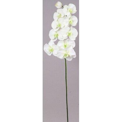 Цветок искусственный Орхидея бело-кремовый 92 см-19983