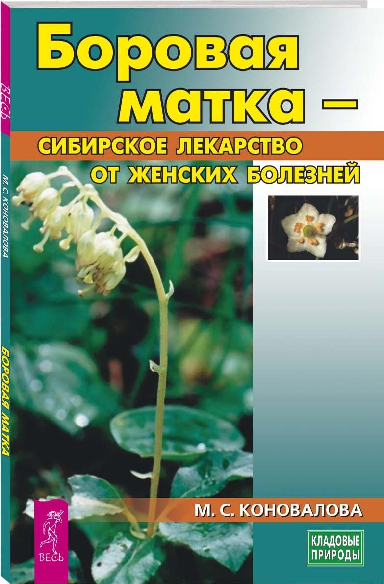 Боровая матка - сибирское лекарство от женских болезней | Коновалова Марина Сергеевна  #1