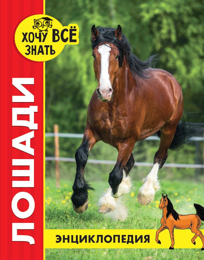 Лошади. Энциклопедия | Калугина Леся #1