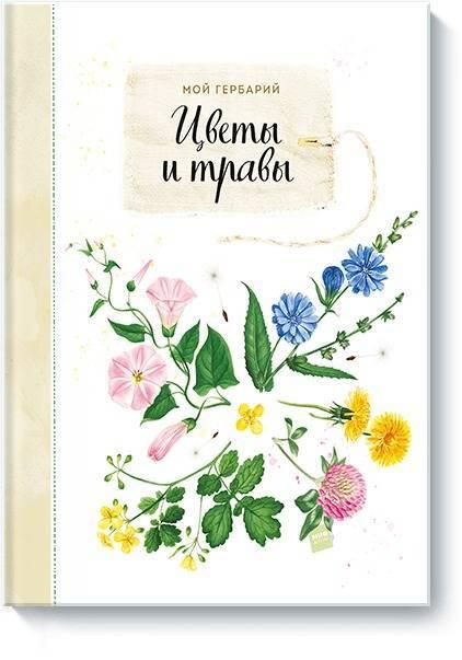 Мой гербарий. Цветы и травы   Нет автора #1