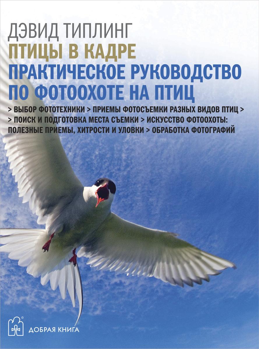Птицы в кадре. Практическое руководство по фотоохоте на птиц | Типлинг Дэвид  #1