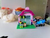 Конструктор LEGO Classic 10692 Набор для творчества #26, Руфина К.
