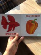 Книжки-картонки. Цвета в природе #9, Елизавета П.